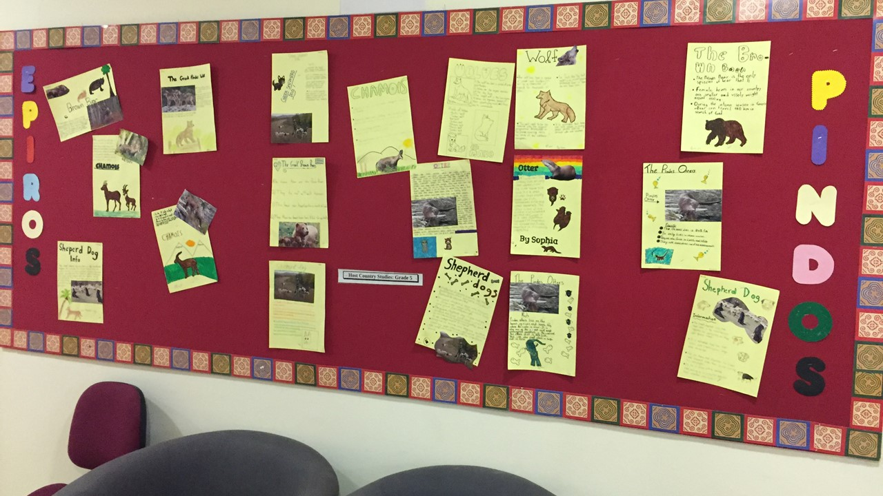 """Wildlife and the Pindos Mountain"" Activity Bulletin Board Presentation"